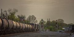 IMG_1834 (~Fred Wolfe~) Tags: trains csx