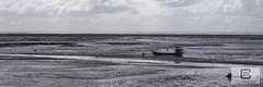 Lège-Cap-Ferret : Le Four (damzed) Tags: pentaxk1ii pentaxdfa2470 aquitaine nouvelleaquitaine gironde lègecapferret lefour panorama noiretblanc monochrome bassindarcachon