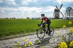 Paris-Roubaix Challenge 5