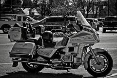 _DSC3941-BW (Simply Angle) Tags: sony sonyphotography sonyphotographing sonya7ii ilce7m2 ilce chewelahwa chewelah washington outdoors sunlight life femount sel90m28g fe90mmf28macrogoss sonyfe90mmf28macrog bw blackwhite honda motorcycle goldwing