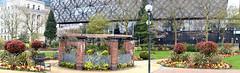 City Centre Garden (Manoo Mistry) Tags: birmingham birminghampostandmail englanduk westmidlands nikon nikond5500 tamron tamron18270mmzoomlens centralbirmingham bir citycentre garden openspace panorama panoramic