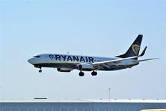 DSC03952 (richellis1978) Tags: ema east midlands airport airliner aeropark airplane aeroplane boeing 737 ryanair 800 737800 eieky