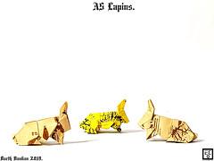 A5 Lapins - Barth Dunkan. (Magic Fingaz) Tags: barthdunkan conejo ecorigami hase kelinci konijn lapin origami origamirabbit paperfolding rabbit кролик กระต่าย 토끼 ウサギ 兔子 mfpp pliagedepapier