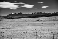 Distante placer de una mirada frente a otra (.KiLTRo.) Tags: kiltro cl chile magallanes torresdelpaine sierrabaguales argentina nationalpark mountain nature road clouds hills landscape range country