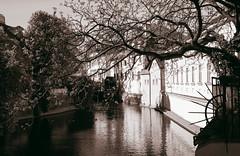 9295-4 (cinnamon_mmi) Tags: prague praha прага czech republic чехия city serpia город river tree дерево река серпия здание