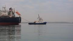 026 -1crp1stpfvib (citatus) Tags: tugboat ocean gauthier freighter isolda eastern gap toronto harbour harbor canada spring morning 2019 pentax k5 ii