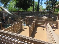 IMG_6740 (earthdog) Tags: 2019 needstags needstitle canon canonpowershotsx730hs powershot sx730hs kelleypark happyhollowparkzoo happyhollowzoopark happyhollow zoo park themepark amusementpark
