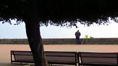 IMG_7503 - a pescare (molovate) Tags: mare pesce tafme canna volate molovate panchjna panorama canon powershot sx40 hs amo abboccare esca