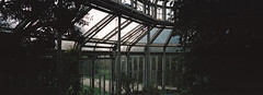 xpan / portra 400 (paulrefn) Tags: portra400 kodak kodakportra400 xpan panorama hasselblad dark colorphotography color berlin analogue analog architecture greenhouse germany mood atmosphere ambiance