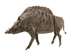 Divine Boar - Satoshi Kamiya (Mariano Zavala B) Tags: divine boar jabalí satoshi kamiya tutorial cerdo