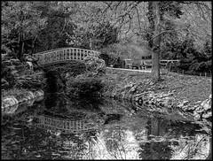DSC03955-Panorama-Modifier (patricklardeau) Tags: 40mm a7rii arboretum assemblages chatenaymalabry voigtlander