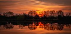 River Thames Sunset (explored 23/04/19) (Dom Haughton) Tags: thames trees tree river sunset oxfordshire oxford eynsham evening spring serene peaceful reflection