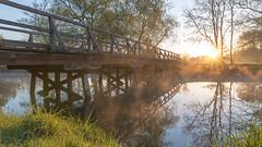 Die Innnerste am Frühen Morgen, Nähe Mastberg (Burr_Brown) Tags: nikon d750 sigma art 24mm