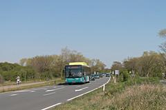 Connexxion 3646 - Bloemendaal, Zeeweg (Daniël Bleumink) Tags: connexxion bus bloemendaal manlionscity lijn81