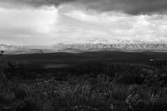 Dempster - 009. (i threw a guitar at him.) Tags: road trip mom 2018 summer june dempster highway high way yukon territory ca canada mountains valley expanse expansive wide open black white range rain weather clouds landscape view vast wild