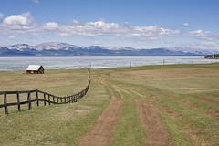 Khövsgöl, Mongolia (bm^) Tags: travel khövsgöllake khövsgöl mongolië mongolia sport infrastructure sand planart1450 carlzeiss nikon d700 nikond700 zeiss planar5014zf mn lake tree water grass gras meer wolk cloud clouds road weg offroad