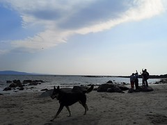 Wave to the Camera (mcginley2012) Tags: drone camera dog beach people coast galwaybay ireland wavetothecamera cameraphone huaweip20pro