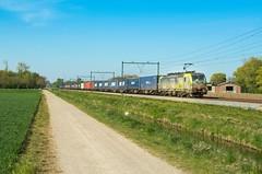 BLS 475 406, Elst (Sander Brands) Tags: trein treni train treno trenuri trenuro traktion siemens vectron bls melzo klv strecke spotten shuttle sun sky nederland nikon d7000 derouted gelderland