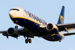 EI-FTN (Andras Regos) Tags: aviation aircraft plane fly airport bud lhbp spotter spotting landing approach ryanair boeing 737 b738