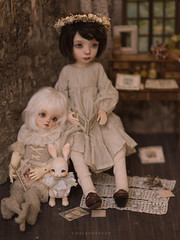 reading at midnight (Underthefern) Tags: littlecosmos little cosmos dolls bjd abjd doll vintage msdoll pan
