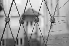 Hanging by a thread (lebre.jaime) Tags: portugal beira covilhã oldtown house gate wire nikon d600 digital voigtländer nokton 58f14sliis ptbw blackwhite bw noiretblanc pb pretobranco affinity affinityphoto nokton5814sliis