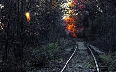 Incoming (honeyj49) Tags: jdh michigan tracks fall