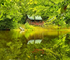 A Summer Finale (VonShawn) Tags: landscape nature cabin pond summer ohio medinacounty reflection water trees