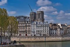 Paris Notre dame ( Philippe L PhotoGraphy ) Tags: france cathédrale 1erarrondissement feu incendie ruederivoli iledefrance paris 2glise notredamedeparis monument