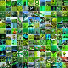 mosaic maker test - green (pbo31) Tags: sanfrancisco california nikon d810 color green mosaic collage april spring 2019 boury pbo31 bayarea
