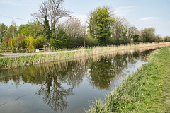 The Grand Canal, Sallins (Conor Byrne Photography) Tags: sallins kildare canal 2019 ireland inland waterways