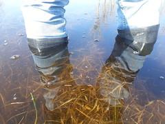 39262702370_c5fe75eb17_o (Ivan_Olsen) Tags: wellies rubber boots gummistiefel stivali di gomma bottes caoutchouc deep water