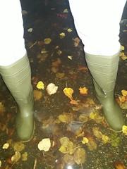 31333859798_a179daa856_o (Ivan_Olsen) Tags: wellies rubber boots gummistiefel stivali di gomma bottes caoutchouc dunlop