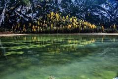 Green (giannipiras555) Tags: green lago dolomiti trentino altoadige nikon riflessi alberi collina montagna autunno natura landscape panorama