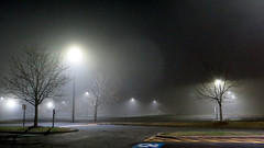 Foggy Tunxis Parking Lot (Coyoty) Tags: tunxiscommunitycollege farmington connecticut ct college campus newengland scenic foggy fog mist light lighting parkinglot parking lot green