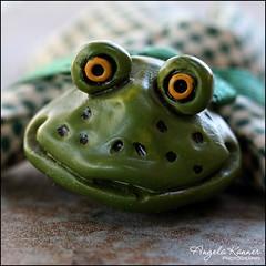 Eye Of The Beholder... (angelakanner) Tags: canon70d lensbaby velvet56 macromondays eyeofthebeholder frog closeup