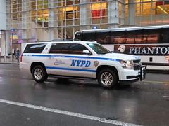 NYPD Chevy Suburban (JLaw45) Tags: nypd newyorkpolicedepartment newyorkpolice nypolice nycops policedepartment nypdvehicle policevehicle police cops lawenforcement law enforcement lawandorder publicservice publicservicevehicle emergencyvehicle emergency emergencyservices fleet safety security safetyandsecurity cop patrol legalsystem legal emergencyservice emergencyservicevehicle chevy chevytahoe chevrolet chevrolettahoe gmsuv gmtruck generalmotors generalmotorssuv chevysuburban suburban chevroletsuburban newyork newyorkcity nyc bigapple newyorkmetroarea manhattanisland unitedstates unitedstatesofamerica northeast newyorkstate state usa metropolitanarea metroarea metropolitan metropolis vehicle motorvehicle nycvehicle nyvehicle newyorkcityvehicle