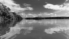 Guaimoreto Lagoon - Trujillo, Houndras (bvi4092) Tags: general landscape sigma reflection outing bw outdoor lake holiday water exterior nikon 18250mm honduras tree travel cloud excursion sky style photoshop d300s blackandwhite trip day4trujillo outside