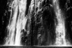 Cascade Niagara, Reunion / Водопад Ниагара, Реюньон (dmilokt) Tags: природа nature пейзаж landscape гора mountain лес forest вода water водопад waterfall dmilokt чб bw черный белый black white