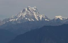 Dochula Pass 3050m en route Punakha (109) (Ann Collier Wildlife & General Photographer) Tags: dochulapass 3050m montains views landscape bhutan landscapebhutan masanggang himalaya