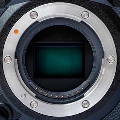 Catch the beauty in the eye of the beholder (FotoCorn) Tags: sensor macro happymacromonday xh1 hmm2019 macromondays macromonday hmm happymacromondays fujifilm eyeofthebeholder