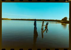 _DSC0131 (simonoga) Tags: analog film photo nikon f80 kodak color plus