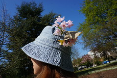 Sakura hat (Steven & Joey Thompson) Tags: sakura hat cherry blossom picnic