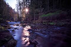 flow (Tofubratwurst) Tags: sächsischeschweiz sandstein sachsen tofubratwurst natur nature kirnitzsch kirnitzschtal sonyalpha7rm2 sony sonyfe1635mmf4zaoss
