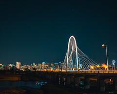 Dallas Skyline (johnj2803) Tags: dallas jfk zoo