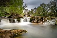 River Greta (Rob Sutherland) Tags: craven burton lonsdale north yorkshire bridge river greta fall water flow flowing rural tranquil england english britain british uk tree spring stone rock formation