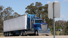 Blue Bonnets (2/2) (Jungle Jack Movements (ferroequinologist)) Tags: kenworth w900 trss binalong nsw new south wales australia hume highway hp horsepower big rig haul haulage cabover trucker drive transport carry delivery bulk lorry hgv wagon road nose semi trailer deliver cargo interstate articulated vehicle load freighter ship move roll motor engine power teamster truck tractor prime mover diesel injected driver cab cabin loud rumble beast wheel exhaust double b grunt bowning svanosio w950