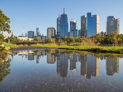 Melbourne Reflections (Anthony Kernich Photo) Tags: melbourne australia victoria travel city cityscape cityview citycentre downtown cbd urban town water puddle path architecture building reflection reflect morning light autumn outdoor outside pleasant microfourthirds olympusem10 olympus olympusomd different yarra