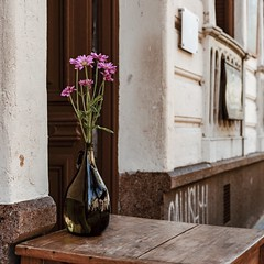 Ciudad Vieja - Montevideo - Uruguay (Irene Carbonell) Tags: ciudadvieja cascohistorico montevideo uruguay uruguaynatural 35mm nikon flores floreros callesdemiciudad miciudad calles