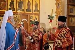 19. Пасхальный молебен в Адамовке 29.04.2019