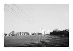 FILM - Power lines and earth lines (fishyfish_arcade) Tags: 35mm analogphotography bw blackwhite blackandwhite canonsureshottelemax filmphotography filmisnotdead istillshootfilm monochrome xp2 analogcamera compact film ilford mono powerlines field ploughed landscape